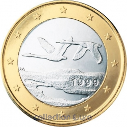 Common currency of the Euro in Finland